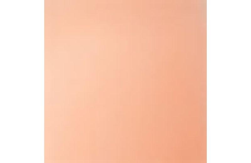 AI475----007---Color_back