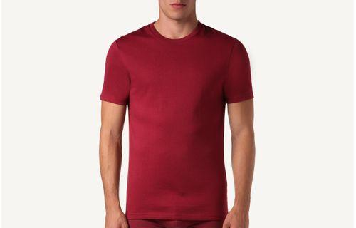 e9d0fc14fdf44 Camiseta De Manga Curta Gola De Algodao Supima® - Vermelho